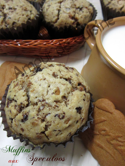 biscoff chocolate muffins